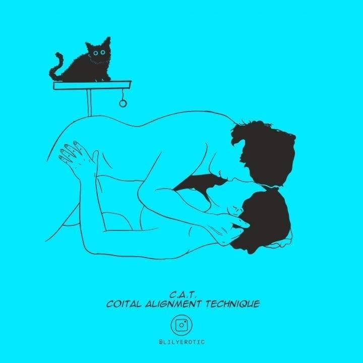 Minimal Erotic artwork of the sex position called C.A.T. with a cat in the background from Lily Erotic